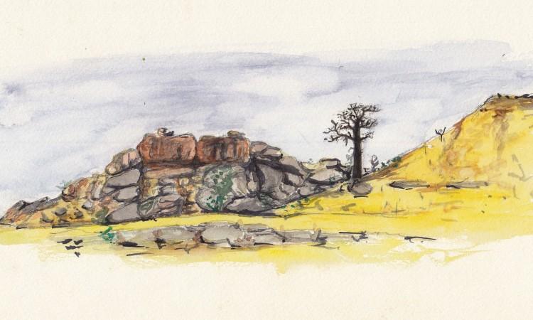 coline